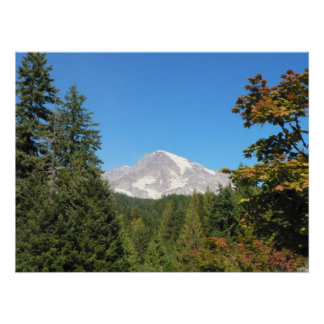 Mount Rainier framed by pine and maple trees Poster