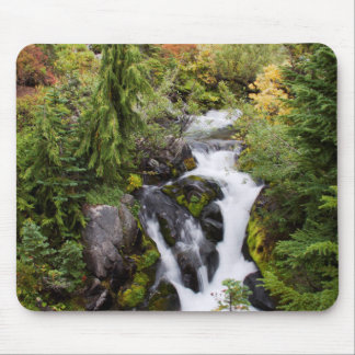 Mount Rainier National Park, autumn stream Mouse Mat