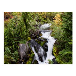 Mount Rainier National Park, autumn stream Postcard