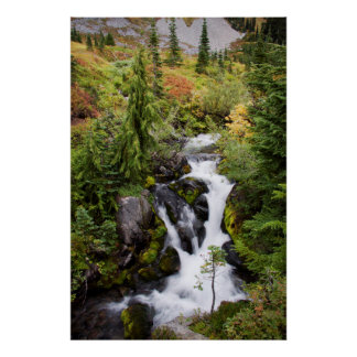 Mount Rainier National Park, autumn stream Poster