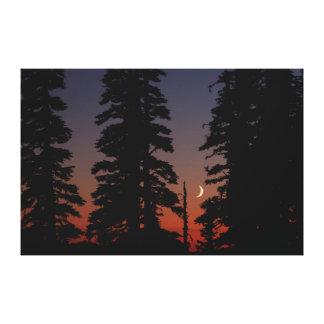 Mount Rainier National Park, Crescent Moon Gallery Wrap Canvas