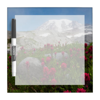 Mount Rainier National Park, Mount Rainier 1 Dry Erase Boards