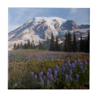 Mount Rainier National Park, Mount Rainier 3 Tile