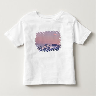Mount Rainier National Park, Sarvent Glaciers Toddler T-Shirt