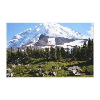 Mount Rainier National Park, WA. Spray Park Canvas Print