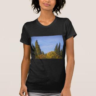 Mount Redoubt Tshirt