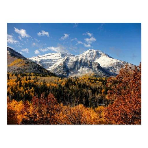 Mount Timpanogos in Autumn Utah Mountains Postcards