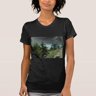 Mount Whitney Trail View T-Shirt #5- Fern Savannah