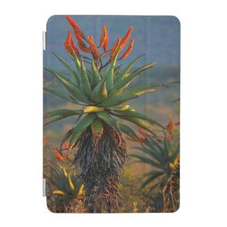 Mountain Aloe (Aloe Marlothii Berger) 2 iPad Mini Cover