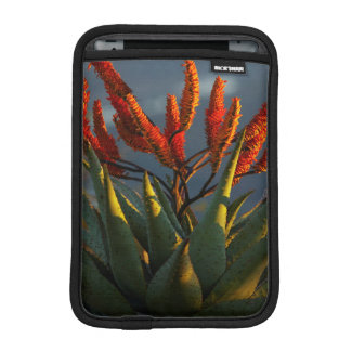 Mountain Aloe (Aloe Marlothii Berger) iPad Mini Sleeve