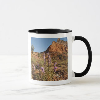 Mountain and Gayfeather Mug