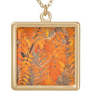 Mountain Ash Leaves in Autumn Custom Jewelry