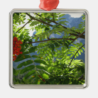 Mountain ash Sorbus Bush with red berries Christmas Ornament