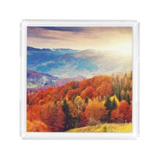 Mountain autumn forest landscape