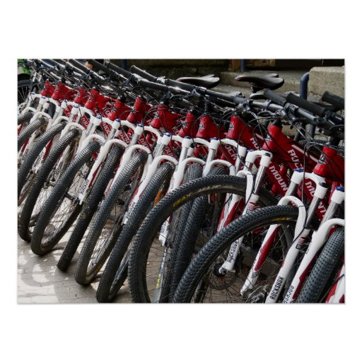 Mountain bikes in a row poster