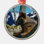 Mountain Black Wolf Resting by Trees Wildlife Art