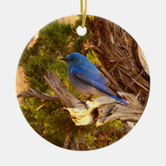 Mountain Bluebird at Arches National Park Round Ceramic Decoration