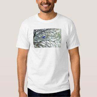 Mountain Bluebird Tshirt