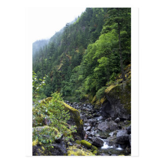 Mountain Brook Postcard