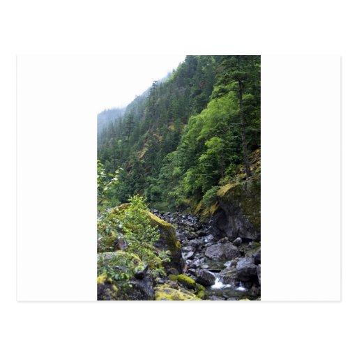 Mountain Brook Post Card