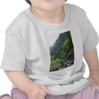 Mountain Brook Shirts