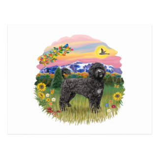 Mountain Country - Black Portie 2C Postcard