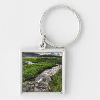 Mountain creek descends through meadow toward key ring