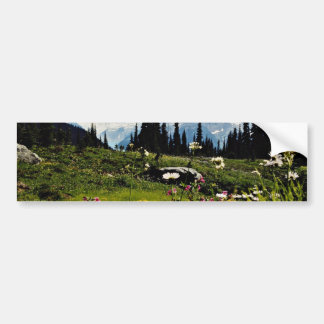 Mountain flowers in bloom, British Columbia, Canad Bumper Stickers
