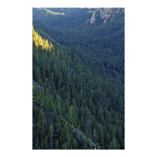 Mountain forest pass stationery