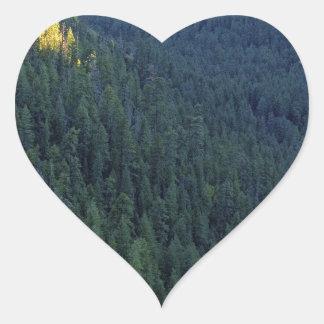 Mountain forest pass heart sticker