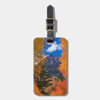 Mountain framed in fall foliage, CA Luggage Tag