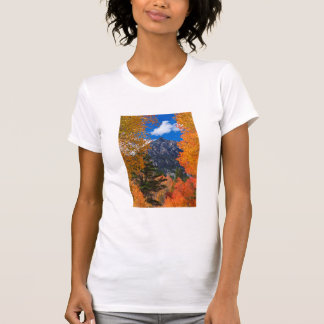 Mountain framed in fall foliage, CA T-Shirt