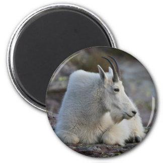 mountain goat 6 cm round magnet