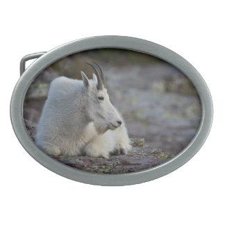Mountain Goat Belt Buckle