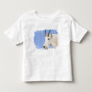 Mountain Goat Billy portrait at Logan Pass in Toddler T-Shirt