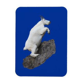 Mountain Goat Climbing Rectangular Photo Magnet