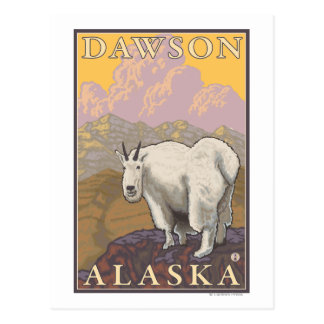 Mountain Goat - Dawson, Alaska Postcard