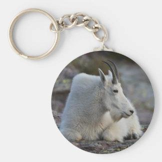 mountain goat key chains