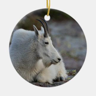 mountain goat resting christmas ornament