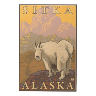 Mountain Goat - Sitka, Alaska Wood Wall Art