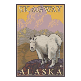 Mountain Goat - Skagway, Alaska Poster