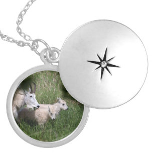 Mountain Goat Twins Locket Necklace