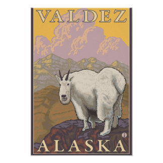 Mountain Goat - Valdez, Alaska Print