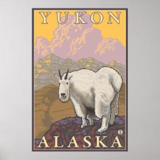Mountain Goat - Yukon, Alaska Poster