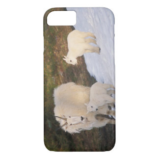 mountain goats, Oreamnos americanus, mother and iPhone 8/7 Case