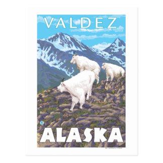 Mountain Goats Scene - Valdez, Alaska Postcard