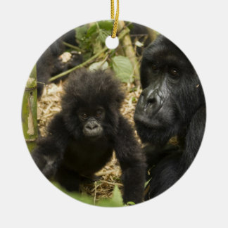 Mountain Gorilla, adult with young Christmas Ornament