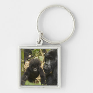 Mountain Gorilla, adult with young Key Ring