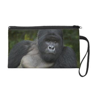 Mountain Gorilla and Silverback 5 Wristlet