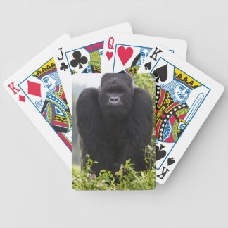 Mountain Gorilla and Silverback Bicycle Playing Cards